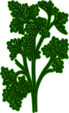 parsley-161940_1280